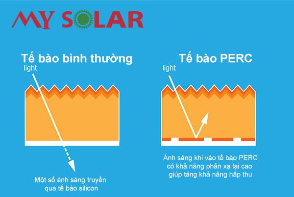 Công nghệ Perc giúp thu được nhiều ánh sáng hơn